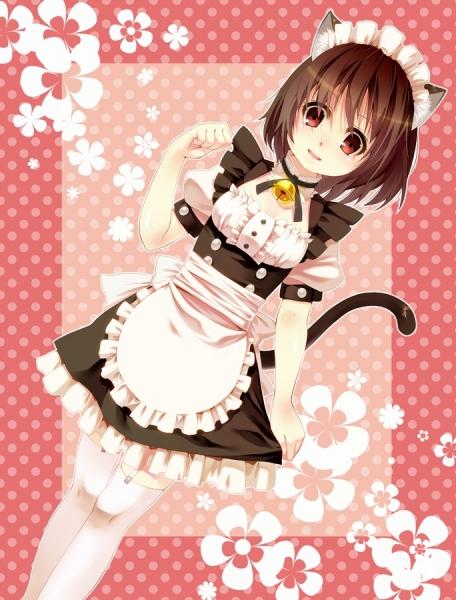 maotd_catgirl-nomu